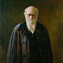 """Das """"abscheuliche Mysterium"""" von Charles Darwin"""